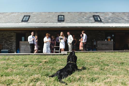 Debs Ivelja Photography fforest wedding-25