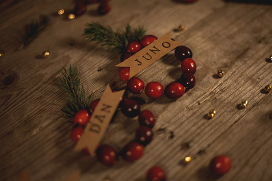 DIY Tutorial: Festive Cranberry Wreath Place Names