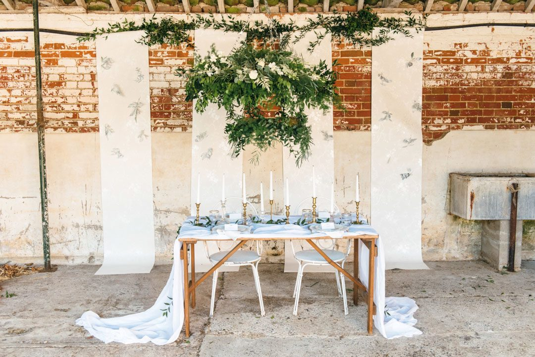 BethMoseleyPhotography_WhiteonWhite-183FINAL1080px wide-92