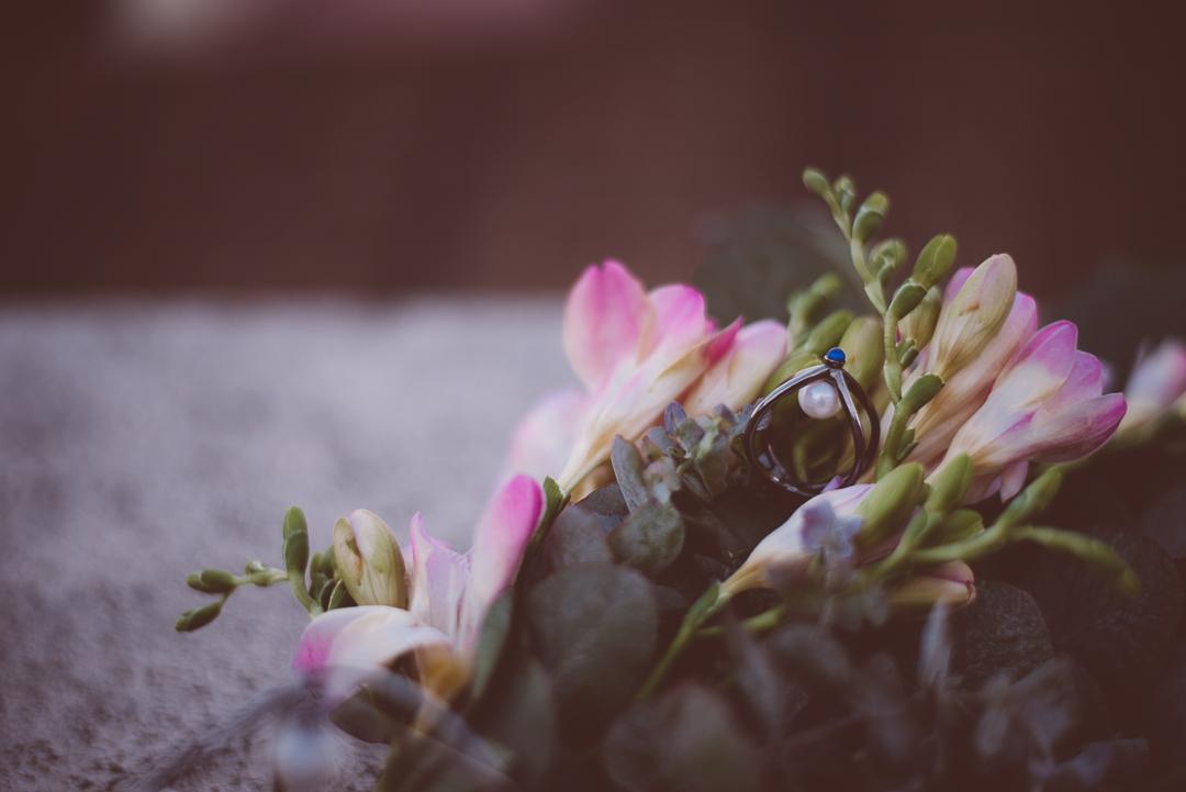 Ana Fernweh Photography-114