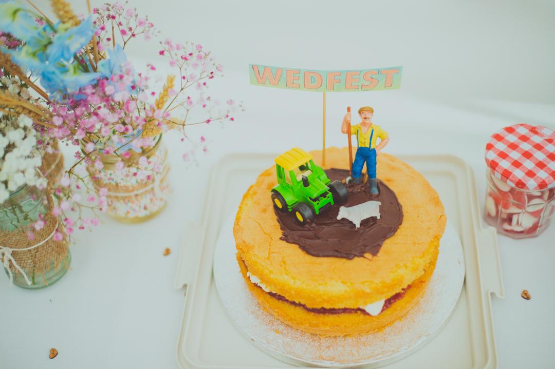 farm-themed-wedding-cake-vicky-and-james-festival-wedding