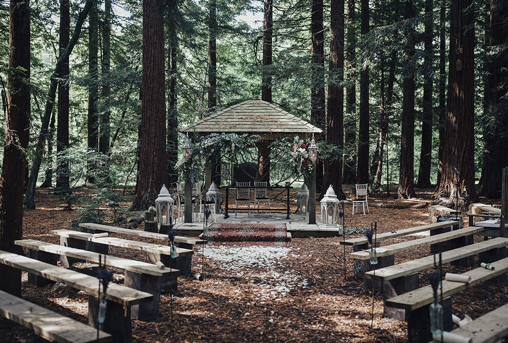So you want to get married?! The Ins and Outs of Wedding Ceremonies